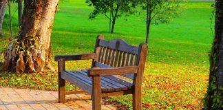 Lakierobejca - skuteczna renowacja drewna