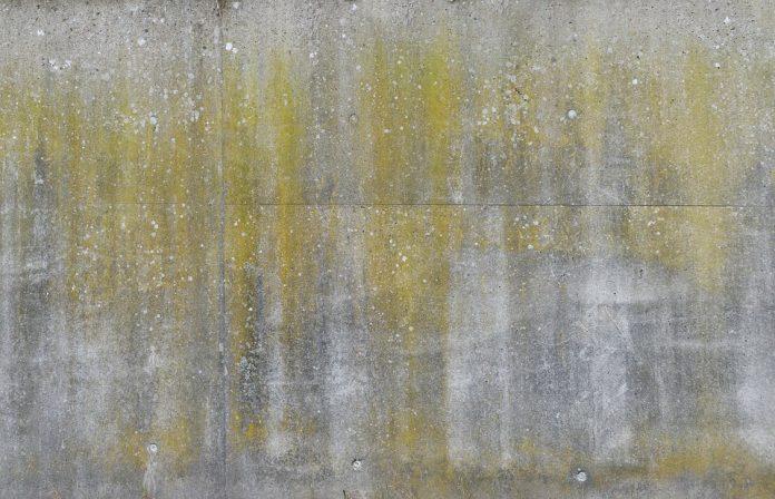 właściwości betonu
